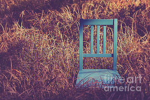 Blue chair out in a field of talll grass by Edward Fielding