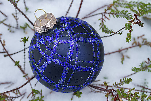 Blue Christmas ball on heather with fresh snow by William Lee
