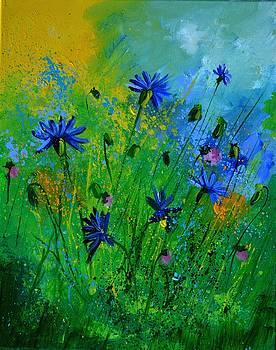 Blue cornflowers 4571 by Pol Ledent