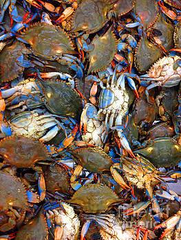 Jost Houk - Blue Crab One