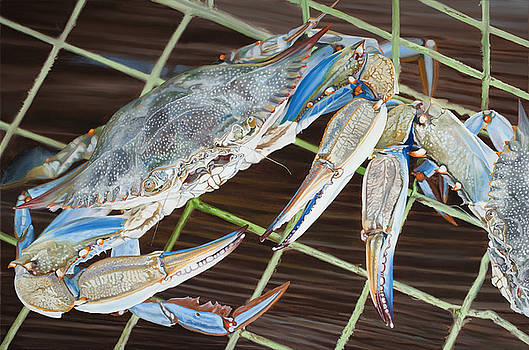 Blue Crabs by Kevin Aita