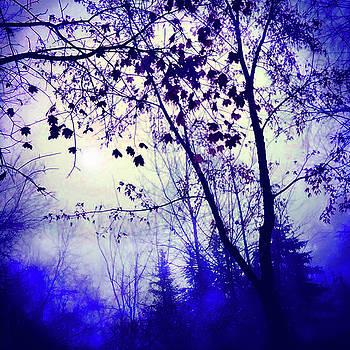 Blue dawn by Gina Signore