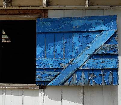 Blue Door by Mark Stevenson