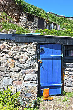 Blue Door Orange Boot by Terri Waters