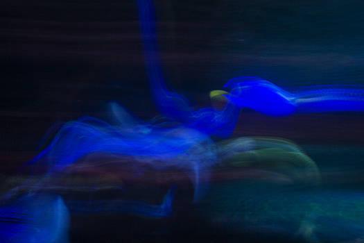 Guy Shultz - Blue Dragon