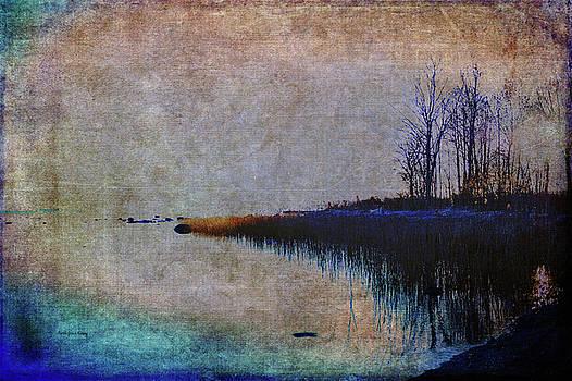 Blue Dream by Randi Grace Nilsberg