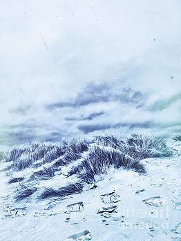 Blue Dunes by John Edwards