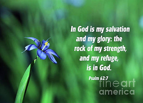 Blue Eyed Grass - Bible Verse Psalm 62-7  by Dee Winslow