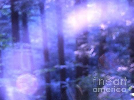 Blue Fairies by Melissa Stoudt