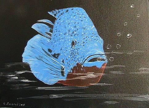 Blue Fish by Catherine Swerediuk