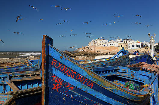 Reimar Gaertner - Blue fishing boats and seagulls with ramparts of Essaouira Moroc