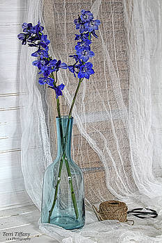 Blue flowers in vase by Terri Tiffany