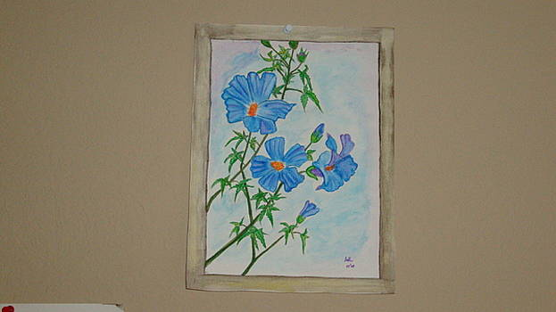 Blue flowers by Indhu Frank