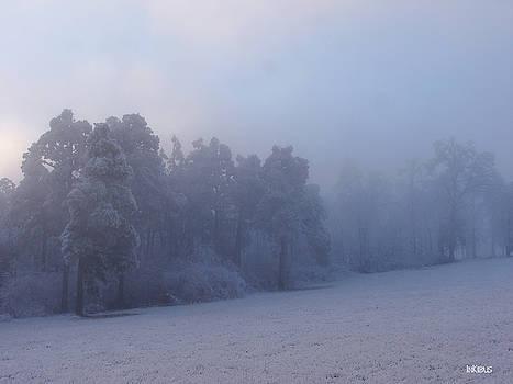 Alana  Schmitt - Blue fog