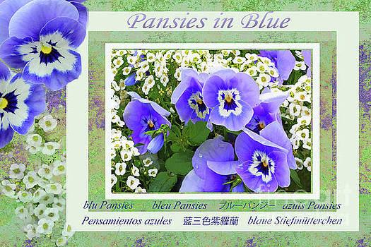 Regina Geoghan - Blue Garden Pansies Collage