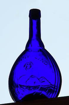 Guy Shultz - Blue Ginny