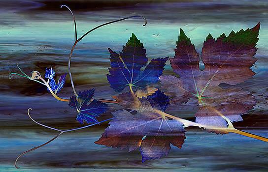 Blue Grapes by Marsha Tudor