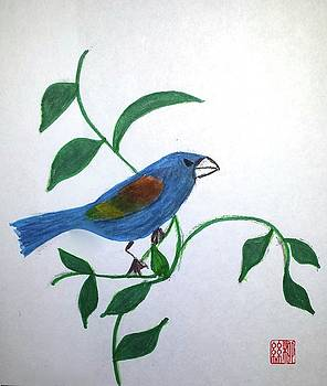 Blue Grosbeak by Margaret Welsh Willowsilk