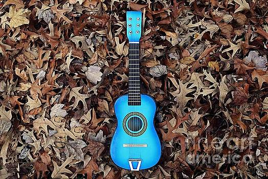 Blue Guitar by Patrick Rodio