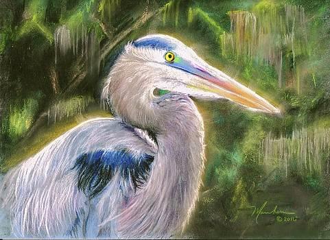 Blue Heron by Melissa Herrin