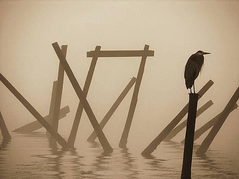 Blue Heron on a Grey Morning by Eagle Finegan