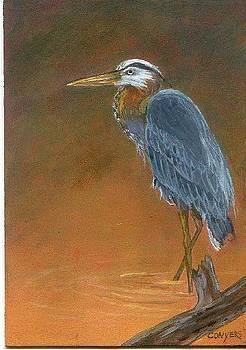Blue Heron by Peggy Conyers