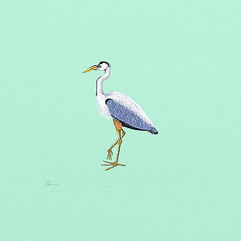 Blue Heron by Shae Leighland-Pence