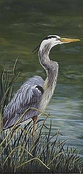 Blue Heron by Sue Ervin