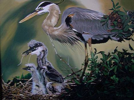 Blue Heron with spring chicks by Robert E Gebler