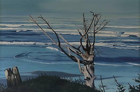 Blue Horizon by Phil Chadwick