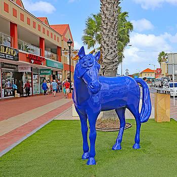 Allan Levin - Blue Horse in Orangjetad, Aruba