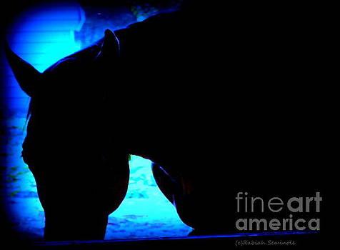 Blue Horse by Rabiah Seminole