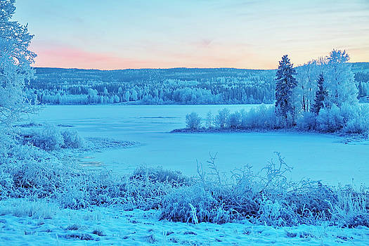 Blue hour at a frozen river by Ulrich Kunst And Bettina Scheidulin