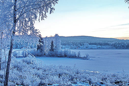 Blue hour at a frozen river with frost covered trees by Ulrich Kunst And Bettina Scheidulin