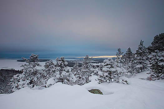 Blue hour at the coast of the Swedish High Coast in winter by Ulrich Kunst And Bettina Scheidulin