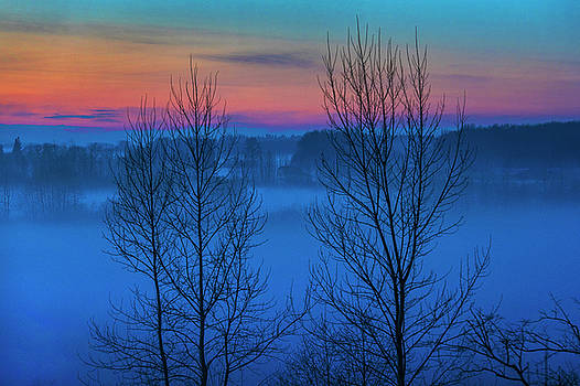 Blue Hour in the Fog by David Lunde