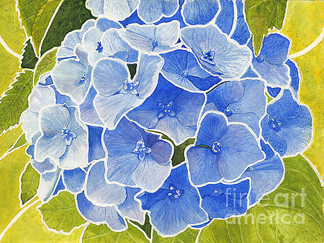 Blue Hydrangea Stained Glass Look by Conni Schaftenaar