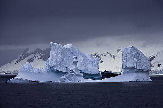 Blue Ice Antarctica by Ralph Fahringer
