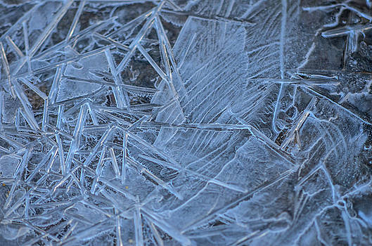 Blue Ice by Joy McAdams