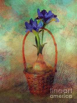 Lois Bryan - Blue Iris In A Basket