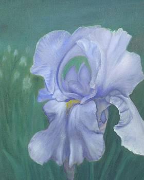 Blue Iris by Laurel Ellis