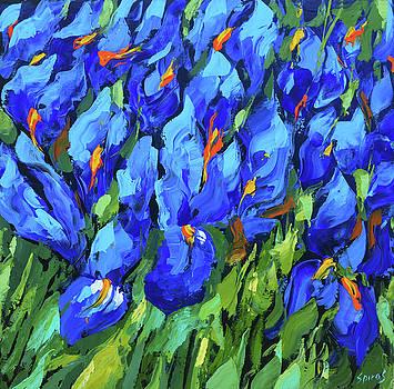 Blue irises by Dmitry Spiros