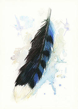 Blue Jay Feather Splash by Brandy Woods