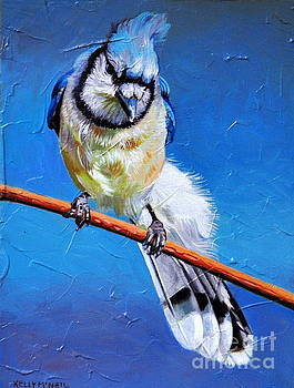 Blue Jay by Kelly McNeil