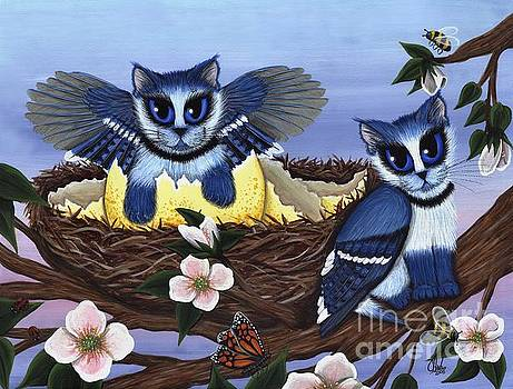 Blue Jay Kittens by Carrie Hawks
