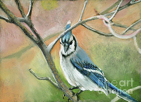 Blue Jay Way by Lori Moon