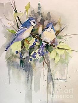 Blue Jays by Shane Guinn