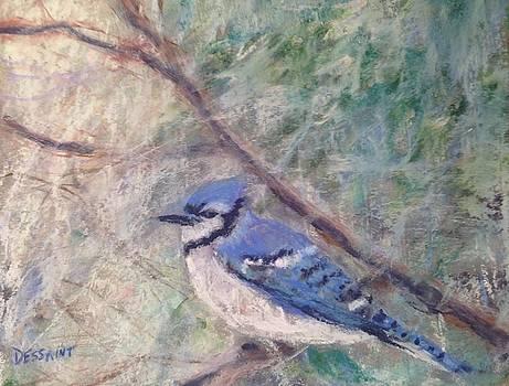 Blue Jay by Linda Dessaint