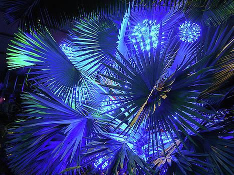 Blue Jungle by Amanda Romer