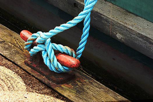 Barbara  White - Blue Knot